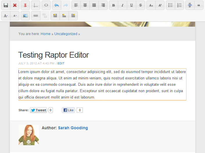 raptor editor wordpress post edit frontend