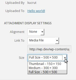 image-size-dropdown