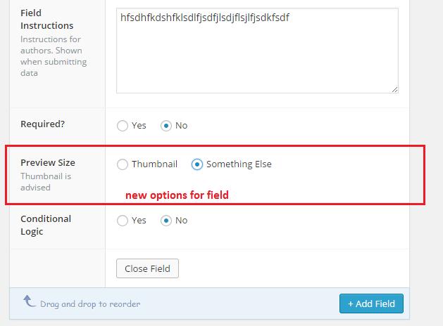 new-options-acf-field