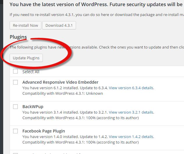 update-plugin-wordpress