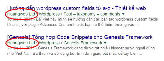 cai-dat-seo-wordpress1