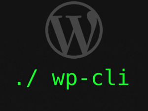 Sao lưu WordPress với WP-CLI & rsync